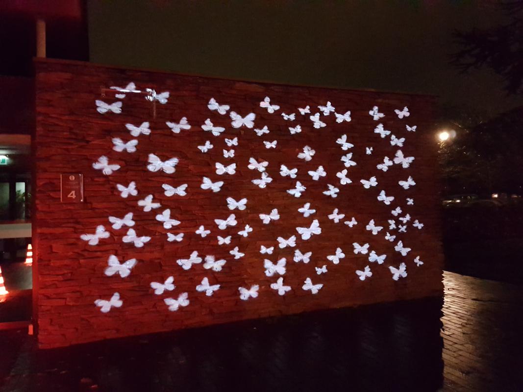 Vervlogen. Projectie kunst met vlinders van Annelies Dijkman. Begraafplaats Rhijnhof Leiden. Elk jaar te zien tijdens Lichtjesavond.